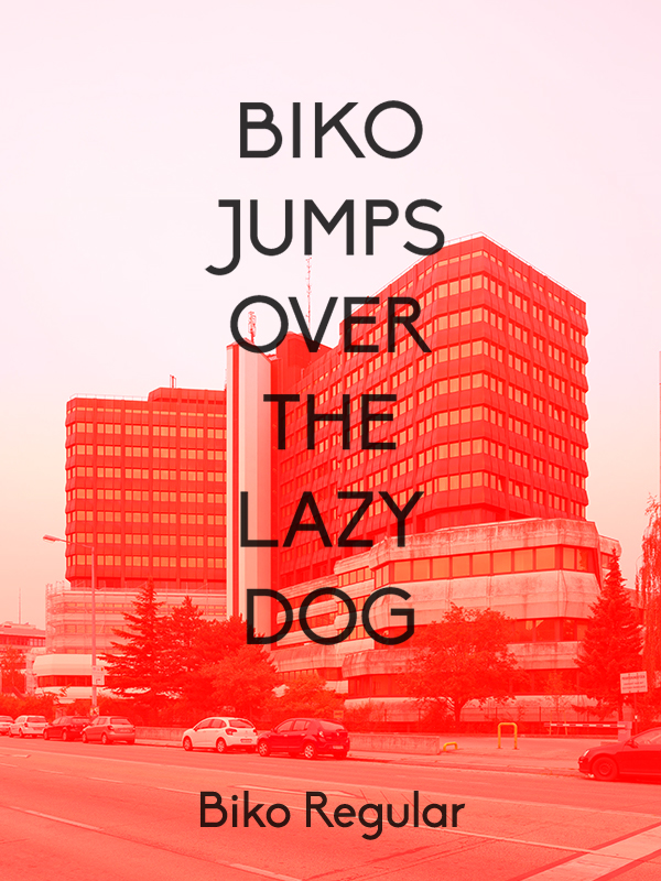 biko-lazy-dog